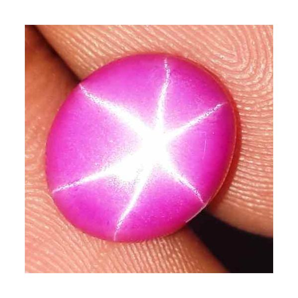 3.87 Carats Star Ruby 9.95 x 8.33 x 3.89 mm