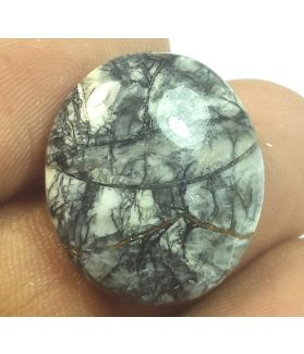 16.67 Carats Natural Corn fossil Oval Shaped 20.10x17.36x5.72 mm