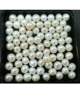 Tumbled Shaped Fresh Water Pearl Undrilled 120/125_47.1