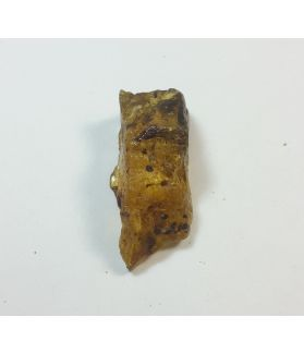 57.90 Carats  Natural Amber rough Shape