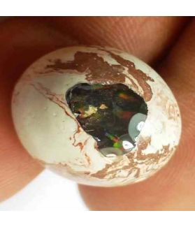 16 Carats Natural Mexicon Opal 18.32 x 16.18 x 9.25 mm