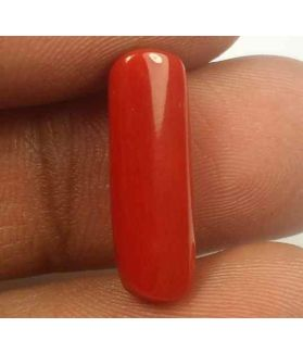 5.79 Carats Red Italian Coral 18.08 x 6.04 x 5.60 mm