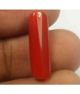 5.48 Carats Red Italian Coral 19.02 x 6.11 x 5.09 mm