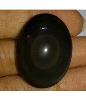 50.82 Carats Obsidian Eye 31.06 X 23.35 X 11.35 mm