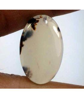 13.89 Carats Montana Agate 23.52 X 14.75 X 4.11 mm