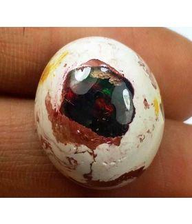 20.50 Carats Mexican Opal 19.70 X 16.55 X 10.52 mm