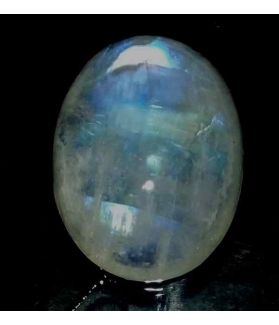 15.89 Carats Ceylon Moonstone 20.30 x 15.15 x 6.85 mm