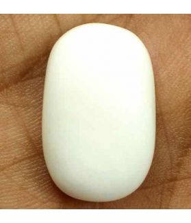 16.04 Carats Italian White Coral 20.04 x 12.94 x 6.28 mm