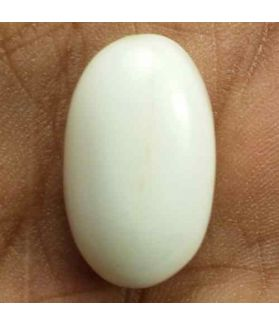 16.54 Carats Italian White Coral 18.50 x 11.08 x 8.47 mm