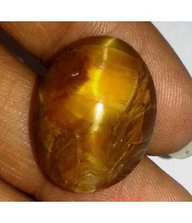 16.49 Carat Orangish Yellow Kanak Khet Chrysoberyl Cat's Eye 20.32 x 15.56 x 9.48 mm