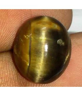 11.11 Carat Orangish Yellow Kanak Khet Chrysoberyl Cat's Eye 14.92 x 13.07 x 7.86 mm