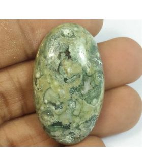 45.83 Carats Rhyolite Rainforest Jasper 36.26 x 21.19 x 8.36 mm
