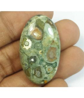 41.36 Carats Rhyolite Rainforest Jasper 35.34 x 20.54 x 7.45 mm