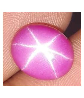 3.60 Carats Star Ruby 9.43 x 7.76 x 3.88 mm