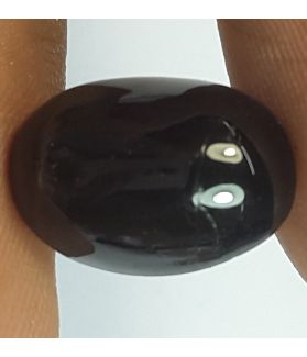 6.67 Carats Natural Star of India Oval Shaped 13.79x9.65x5.88 mm