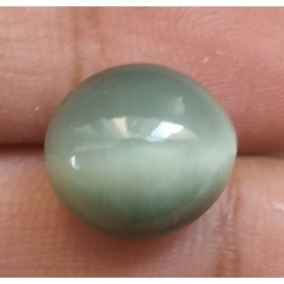 7.26 Carats Natural Cats Eye  12.30x11.15x7.67mm