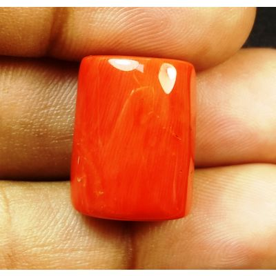 23.19 Carats Natural Italian Red Coral 17.67x13.86x9.47mm