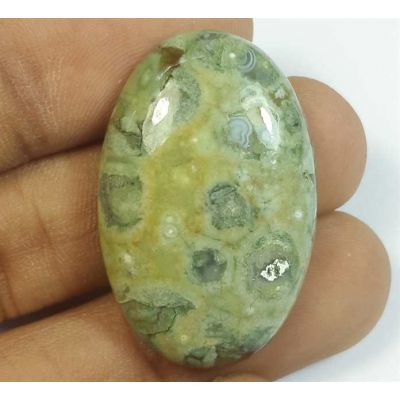 39.47 Carats Rhyolite Rainforest Jasper 27.34 x 21.28 x 5.68 mm