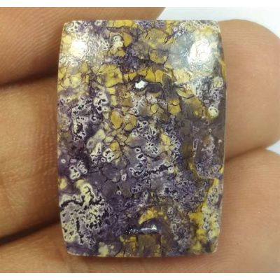 18.78 Carats Tiffany Jasper 23.72 x 16.93 x 4.77 mm