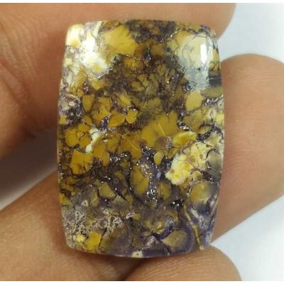 13.25 Carats Tiffany Jasper 22.33 x 15.74 x 3.97 mm