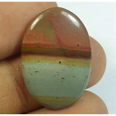 13.52 Carats Cherry Creek Jasper 25.84 x 17.74 x 3.58 mm