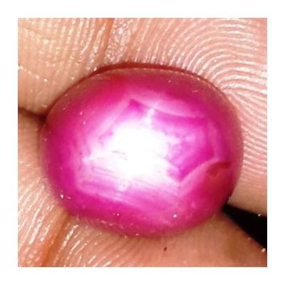 15.45 Cts Star Ruby Johnson Mines 13.41 x 10.18 x 10.17 mm