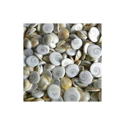 Wholessale lot of Gomati chakra, 1KG